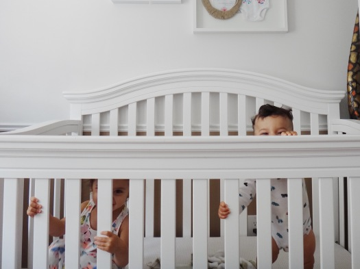 Shared Baby and Toddler Nursery (7)